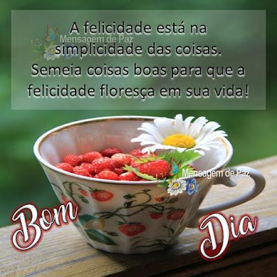 A felicidade está na simplicidade das coisas. Semeia coisas boas para que  a felicidade floresça em sua vida!   Bom Dia!