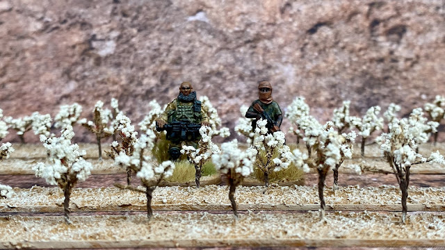 JJT Scenery Products 28mm Cotton Crops for Western Africa, Mali and the Sahel