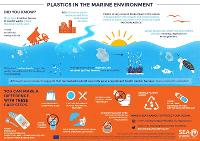 Plastic Pollution in ocean info-graphics