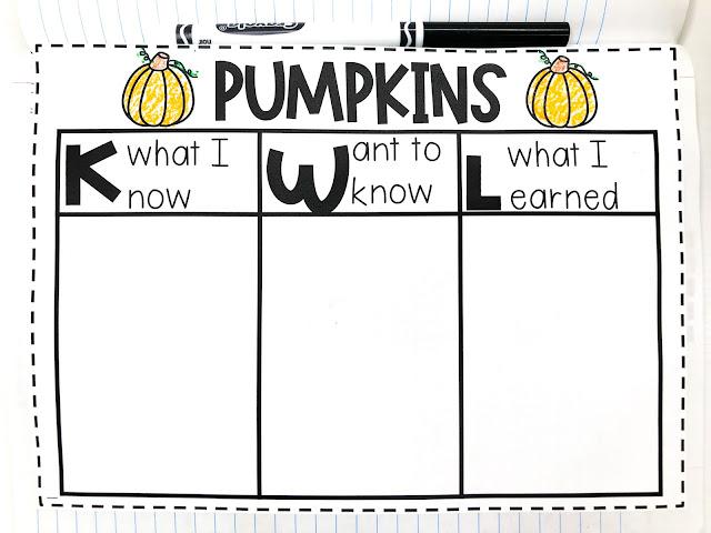 pumpkin circle