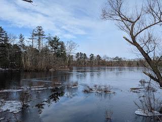 Spring Pond along Washington St