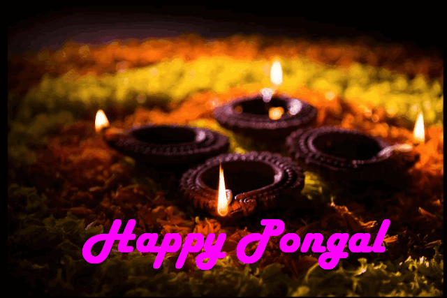 Pongal Pot Kolams HD Images