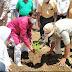 झाबुआ - सांसद गुमान सिंह डामोर ने ग्रीन इंडिया मिशन के अंतर्गत पौधारोपण कर योजना का किया श्रीगणेश
