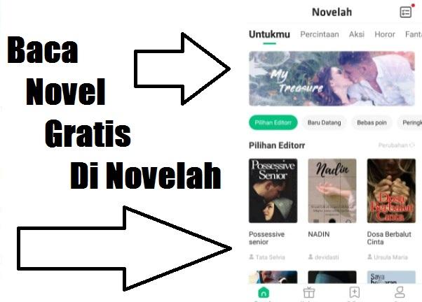 Cara Baca Novel Gratis di Novelah