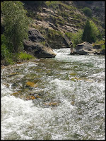 Fishing Cottonwood River under Joe Valley Reservoir