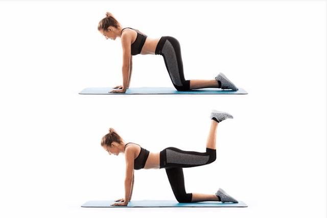 تمارين تمديد الأطراف الأربعة أو Quadruped Hip Extension