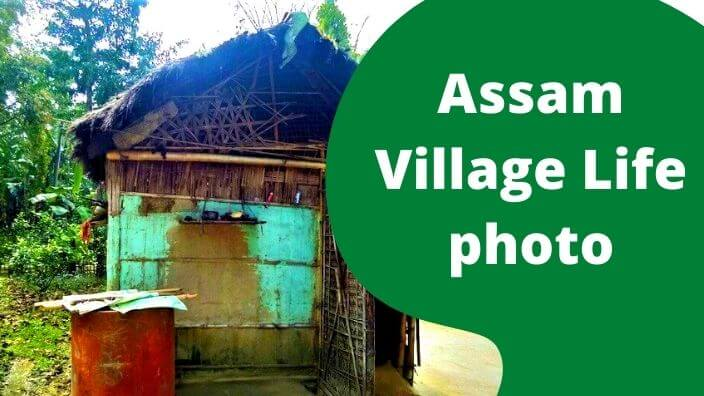 Assam Village Life photo