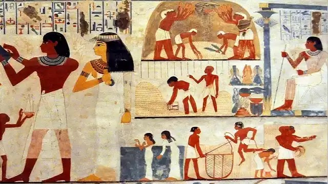 Ancient Egyptian Crops