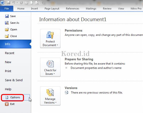 File Option di Word