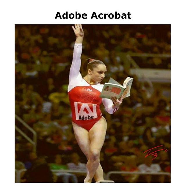Meme Adobe Acrobat Reader