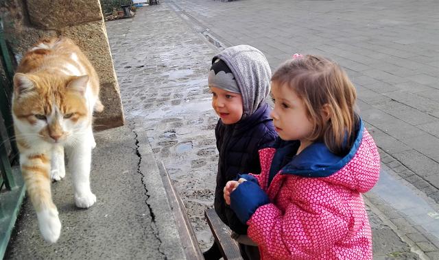 podróż z dziećmi na Cypr