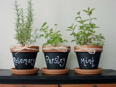 Thyme for Herbs II