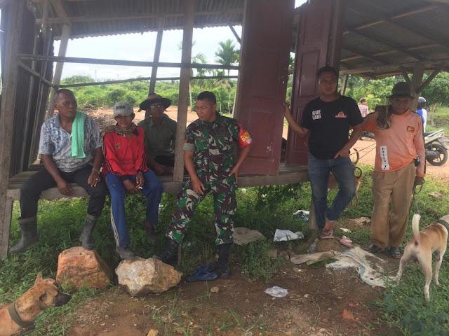 Cegah Kerusakan Lingkungan, Babinsa Koramil 07/Pauh Kambar Ikut Berburu Babi