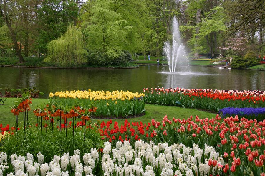 Красивый вид на фонтан парка Кекенхоф