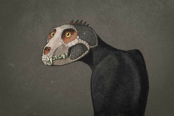 How ordinary animals would look if they were recreated like dinosaurs - Over skeletons