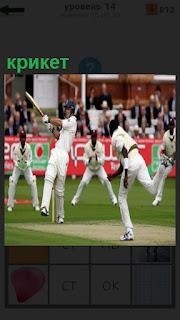 На поле идет игра в крикет, спортсмены клюшками отбивают мяч