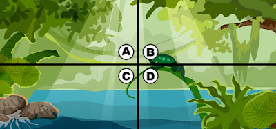 Spot The Phone Quiz Answers 100% Score