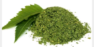 The best natural way to remove the stains of the mouth, to eliminate the use of neem leaves, to eliminate the strain of the boys, to remove the bronchitis of women, to use niom, to eat the skin in the summer, the healthy way to heat