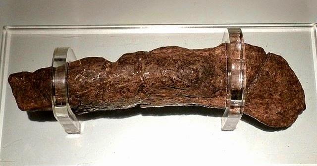 La historia del Coprolito de Lloyds Bank... la mayor caca humana de la historia que se guarda en un museo