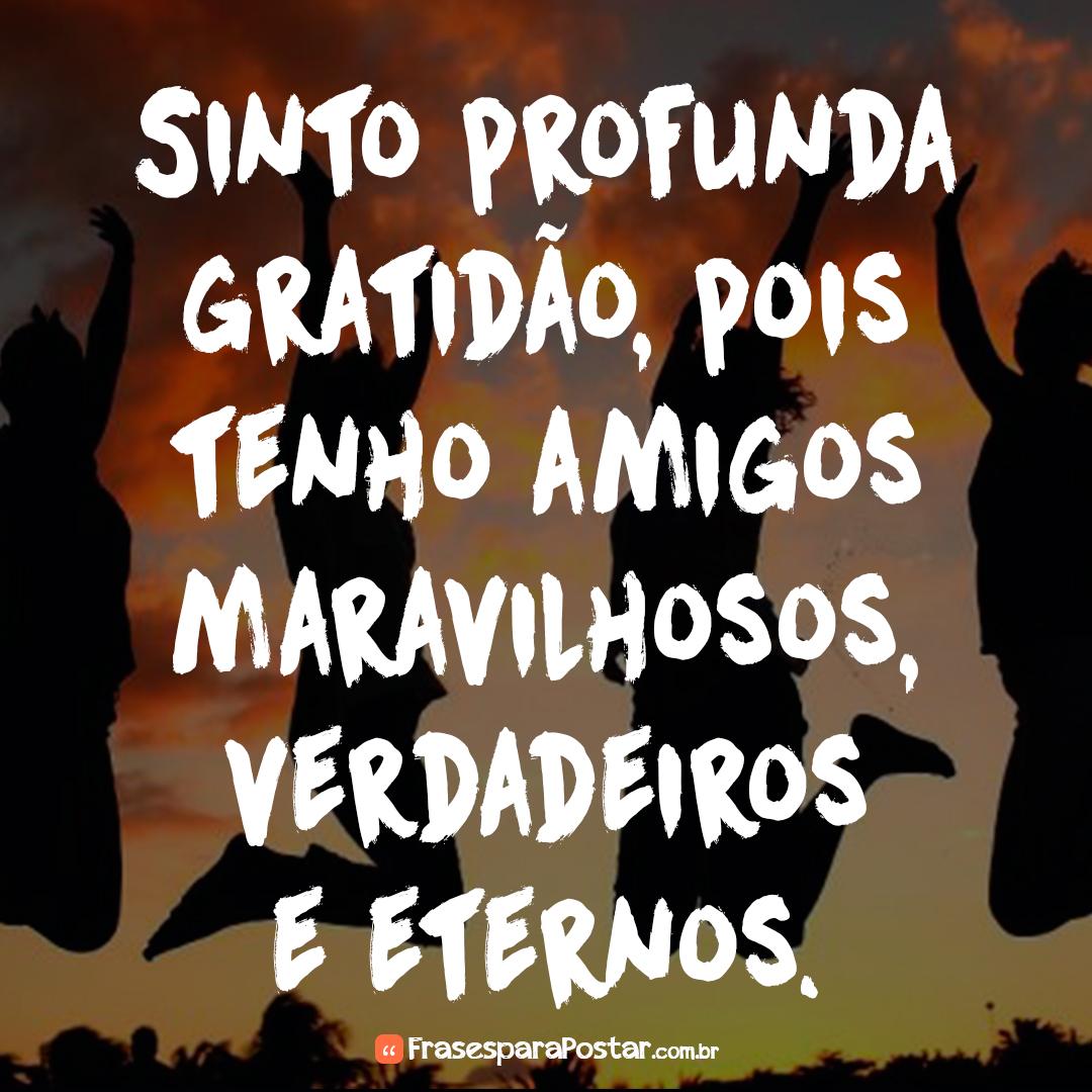 Sinto profunda gratidão, pois tenho amigos maravilhosos, verdadeiros e eternos.