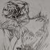 Arte no papel , desenho a lápis e detalhes