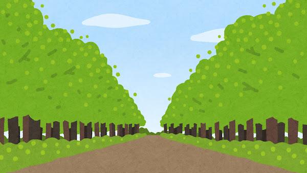 並木道のイラスト(緑)
