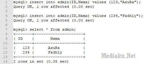 Fungsi Insert Database MySQL