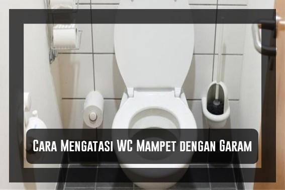 Cara Mengatasi WC Mampet dengan Garam