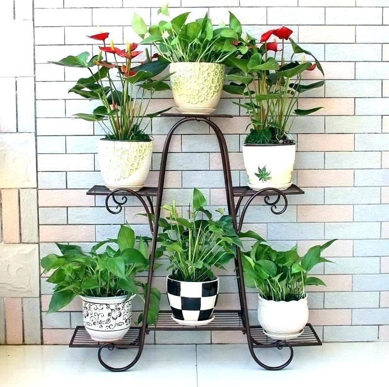 Aneka Rak Bunga yang dapat Mempercantik Teras Rumah Anda ...