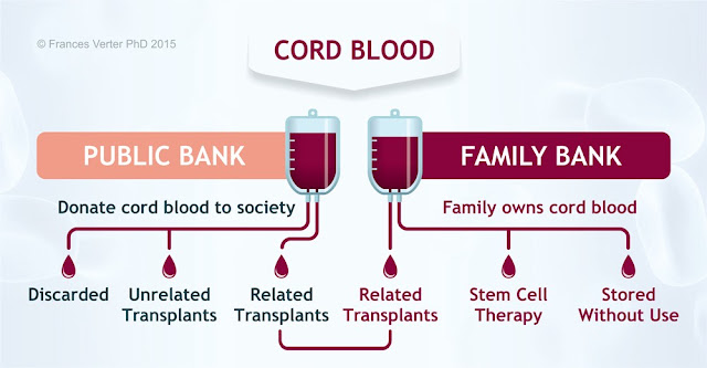 stem cell banking malaysia