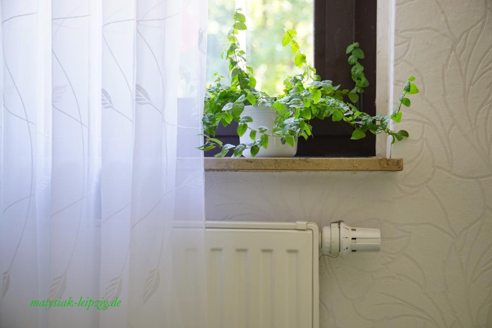 casa maja blog effizient umweltschonend und wirkungsvoll l ften und heizen. Black Bedroom Furniture Sets. Home Design Ideas
