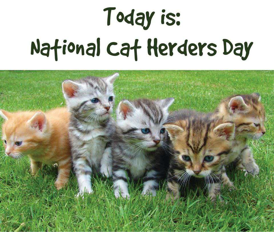 National Cat Herders Day Wishes Sweet Images