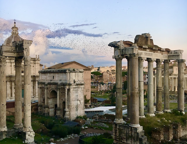 Roman Forum with murmuration