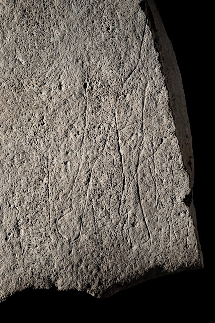 Prehistoric stone engraved with horses found in France