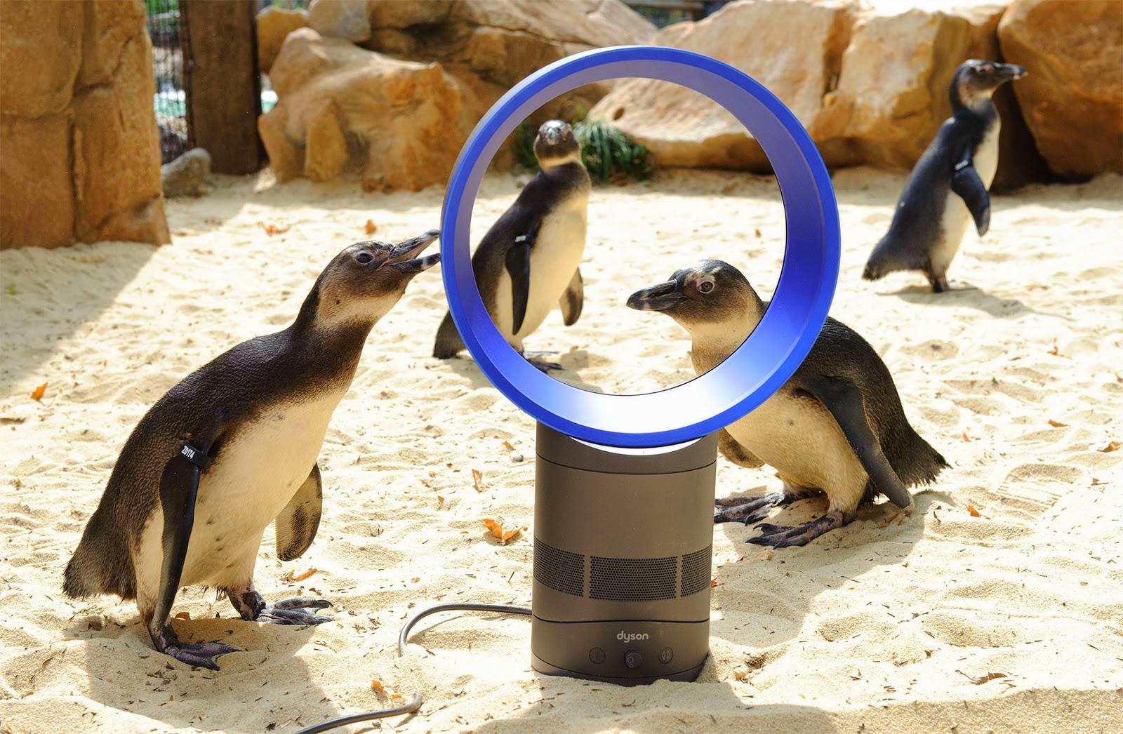 Zoológico London Zoo em Londres