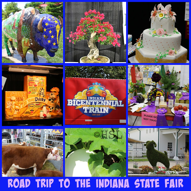 Road Trip, Indiana State Fair, 4-H projects