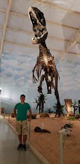 Museu de História Natural da América Latina fica em Itatiba