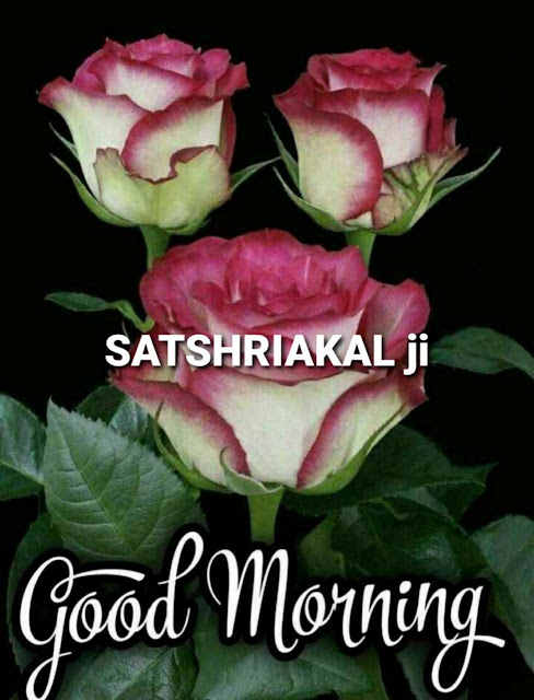 Sat Shri Akal Ji Good Morning