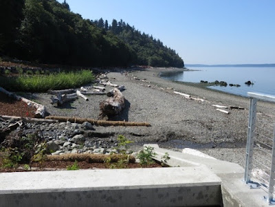 Photo of Seahurst Park after bulkhead removed and other shoreline actions.