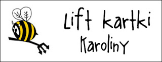 http://diabelskimlyn.blogspot.com/2016/04/lift-kartki-karoliny.html