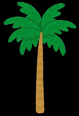 長いヤシの木のイラスト