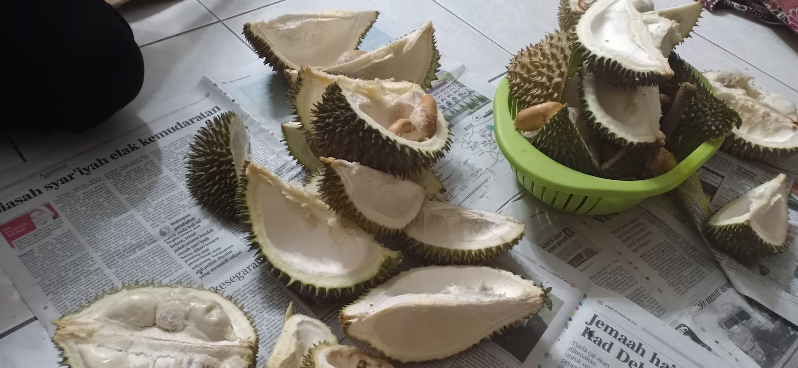 Durian murah Semenyih Beranang RM5/kg