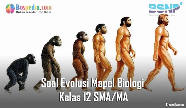 Soal Evolusi Mapel Biologi Kelas 12 SMA/MA