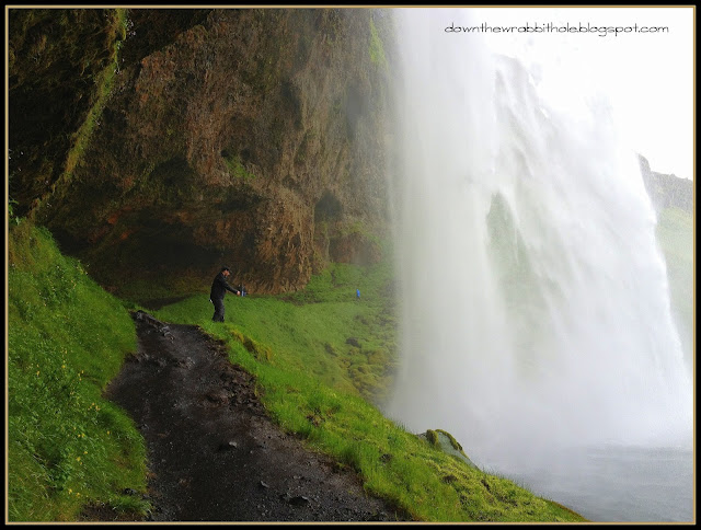 Iceland waterfall, things to see and do near Reykjavik
