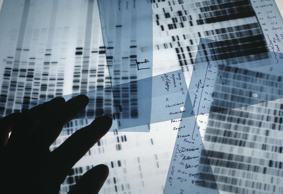 ALL ABOUT DNA: DNA PROFILING