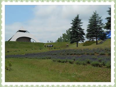 Hokusei no oka (北西の丘展望公園)