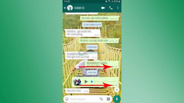 Gambar 1 Cara Mengetahui Chat WA Dibaca