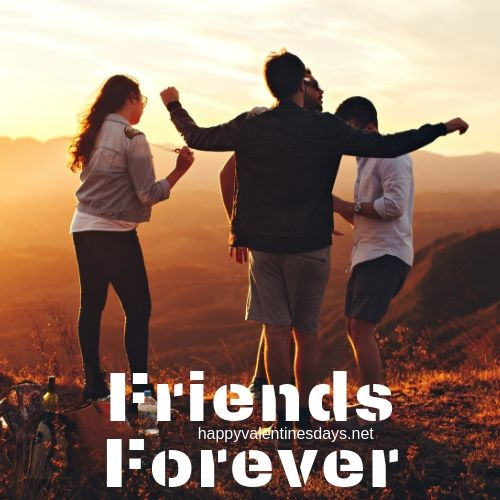 friends forever dp