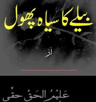 Free download Belay ka siah phool novel by Aleem Ul Haq Haqi pdf, Online reading.