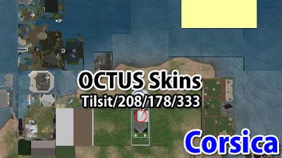 http://maps.secondlife.com/secondlife/Tilsit/208/178/333